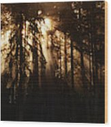 Sultry Morning Radiance Wood Print