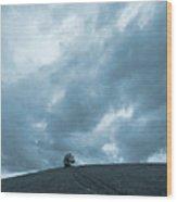 Summer At Buck Hill Wood Print
