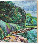Summer Shore Of Hudson River, New York Wood Print