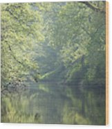 Summer Time River And Trees Wood Print