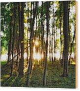 Sun Slivers Wood Print