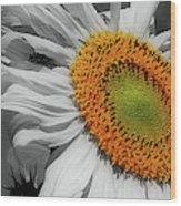Sunflower And Shy Friend Wood Print