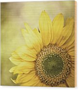 Sunflower Blossom With Bokeh Background Wood Print