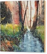 Sunlight Colorful Path Wood Print