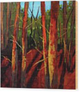 Sunny Forest Landscape Wood Print