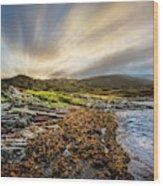 Sunrays At Dawn Along The Coast Wood Print