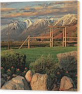 Sunrise In Carson Valley Wood Print