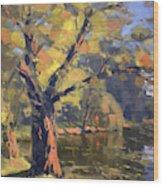 Sunset At Bond Lake Park Wood Print
