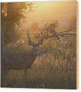 Sunset Deer Wood Print