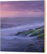 Sunset Surf On The Gulf Of Mexico, Venice, Florida Wood Print