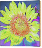 Sunspray Wood Print
