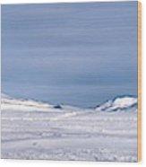 Svalbard Panorama Wood Print
