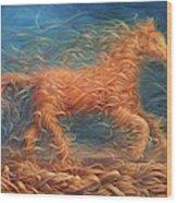 Swirly Horse 1 Wood Print