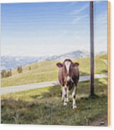 Swiss Cow Wood Print