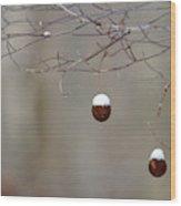Sycamore Snowbells  Wood Print
