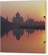 Taj Mahal & Silhouetted Camel & Wood Print