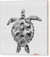 Tartoise Wood Print