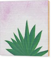 Agave Print Wood Print