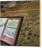 Terra Cotta Warriors In Pit 3 Ruins With Diagram Wood Print