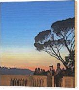 Terrazza Del Pincio Wood Print
