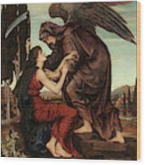 The Angel Of Death, 1880 Wood Print