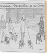 The Annual Mortification Of The Canines Wood Print