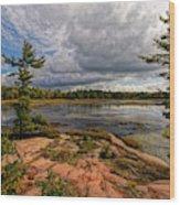 The Artistic Cranberry Bog Wood Print