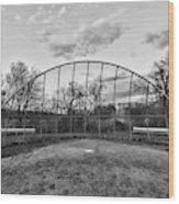 The Baseball Field Black And White Wood Print