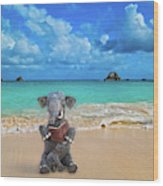 The Beach Story Wood Print