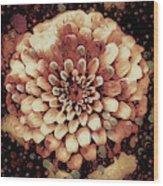 The Bloom Of Fall Wood Print