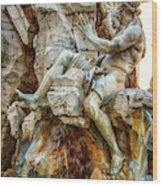 The Danube Wood Print
