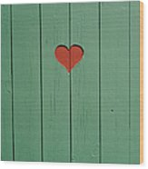 The Door To A Outhouse Wood Print