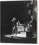 The Doors At The Fillmore East Wood Print