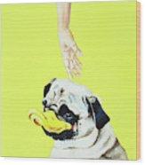 The Duck Wood Print