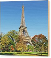 The Eiffel Tower With Some Autumnal Wood Print