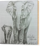 The Elephant Wood Print