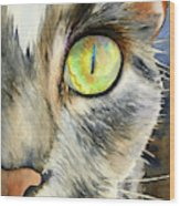 The Eye Of The Kitty Wood Print