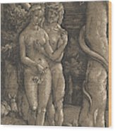 The Fall Of Mankind, 1511  Wood Print