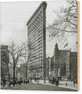 The Flatiron Building 1903 Wood Print