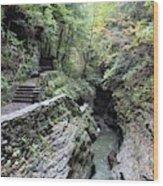 The Gorge Trail Wood Print