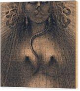 The Idol Of Perversity, 1891 Wood Print