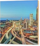 The Lifeblood Of Atlanta Wood Print
