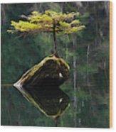 The Little Tree On Fairy Lake 5 Wood Print