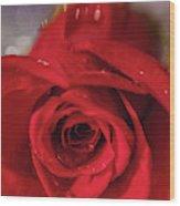 The Magic Of Roses Wood Print