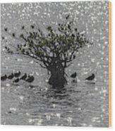 The Mangrove Wood Print