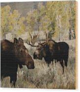 The Moose Rut Wood Print