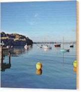 The Mylor Dolphin Wood Print