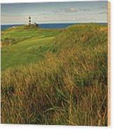 The Old Head Golf Links, Kinsale Wood Print