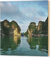 The Scenic Of Halong Bay Wood Print