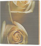 The Soft Shadows Wood Print